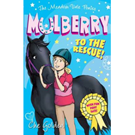 Meadow Vale Ponies: Mulberry to the Rescue! (BOK)