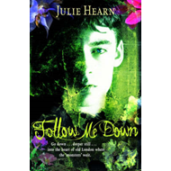 Follow Me Down (BOK)