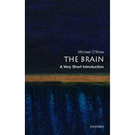 Brain: A Very Short Introduction (BOK)