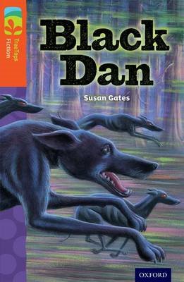 Oxford Reading Tree Treetops Fiction: Level 13 More Pack A: Black Dan (BOK)