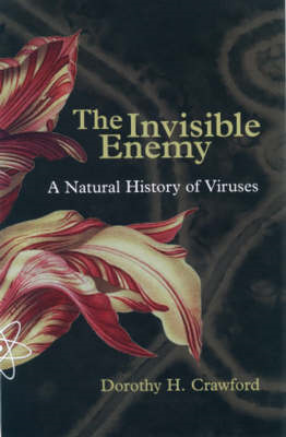 Invisible Enemy (BOK)