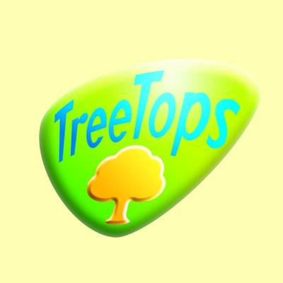 Oxford Reading Tree: Level 15: Treetops Classics: Teaching N (BOK)