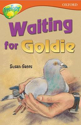 Oxford Reading Tree: Level 13: Treetops Stories: Waiting for Goldie (BOK)