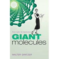 Giant Molecules: From Nylon to Nanotubes (BOK)