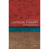 Critical Theory: A Very Short Introduction (BOK)