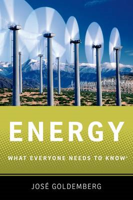Energy: What Everyone Needs to Know (BOK)