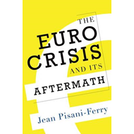 Euro Crisis and its Aftermath (BOK)