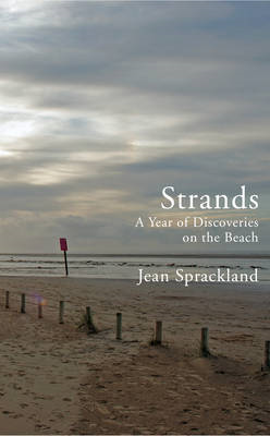 Strands: A Year of Discoveries on the Beach (BOK)