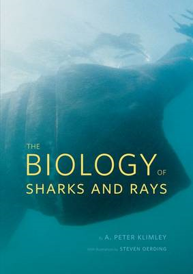 Biology of Sharks and Rays (BOK)