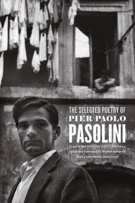 The Selected Poetry of Pier Paolo Pasolini (BOK)