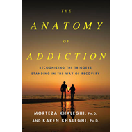 The Anatomy of Addiction: Overcoming the Triggers That Stand in the Way of Recovery (BOK)