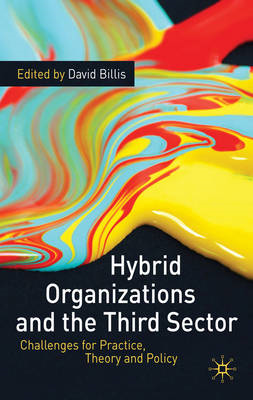 Hybrid Organizations and the Third Sector: Challenges for Practice, Theory and Policy (BOK)