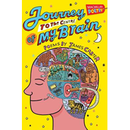 Journey to the Centre of My Brain (BOK)