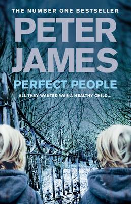 Perfect People (BOK)