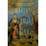 Waking, Dreaming, Being (BOK)