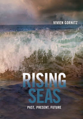 Rising Seas: Past, Present, Future (BOK)