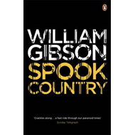 Spook Country (BOK)
