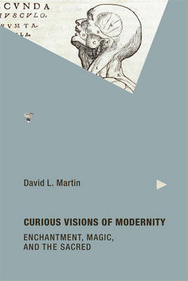Curious Visions of Modernity (BOK)