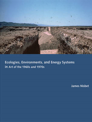 Ecologies, Environments, and Energy Systems in Art of the 19 (BOK)