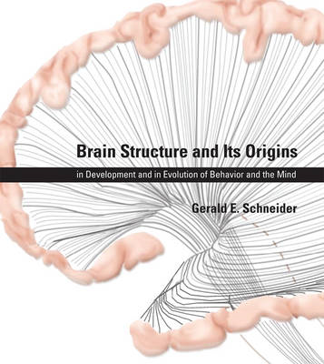 Brain Structure and Its Origins (BOK)