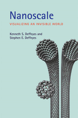 Nanoscale: Visualizing an Invisible World (BOK)