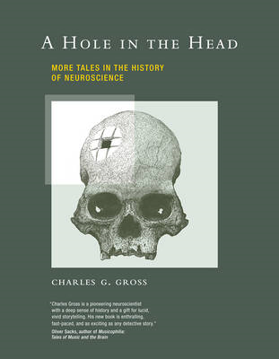 Hole in the Head (BOK)