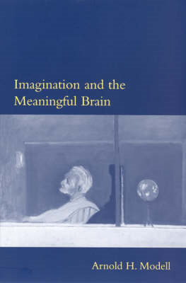 Imagination and the Meaningful Brain (BOK)