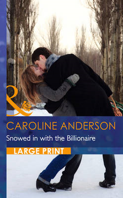Snowed In With The Billionaire (BOK)