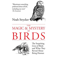 Magic and Mystery of Birds (BOK)