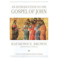 Introduction to the Gospel of John (BOK)