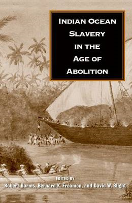 Indian Ocean Slavery in the Age of Abolition (BOK)