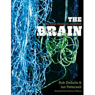 The Brain: Big Bangs, Behaviors, and Beliefs (BOK)