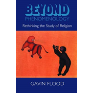 Beyond Phenomenology: Rethinking the Study of Religion (BOK)