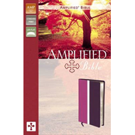 Amplified Bible (BOK)