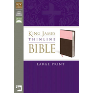 King James Version Thinline Bible (BOK)