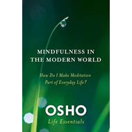 Mindfulness and the Modern World (BOK)