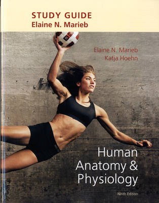 Study Guide for Human Anatomy & Physiology (BOK)
