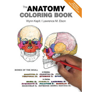 Anatomy Coloring Book (BOK)