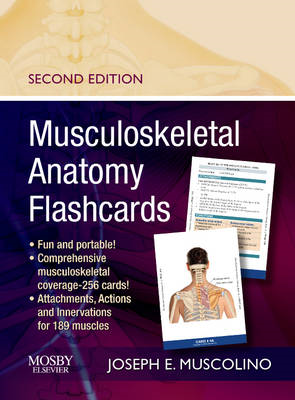 Musculoskeletal Anatomy Flashcards (BOK)