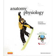 Anatomy & Physiology (BOK)