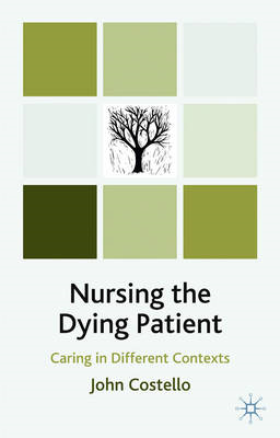Nursing the Dying Patient: Caring in Different Contexts (BOK)