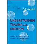 Understanding Trauma and Emotion: Dealing with Trauma Using an Emotion-focused Approach (BOK)