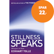 Produktbilde for Stillness Speaks (BOK)