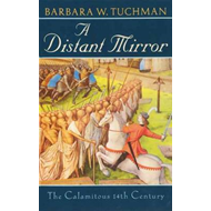 A Distant Mirror: The Calamitous 14th Century (BOK)