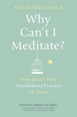 Why Can't I Meditate? (BOK)