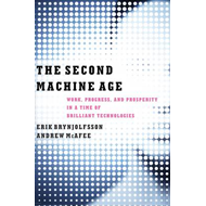 Second Machine Age (BOK)