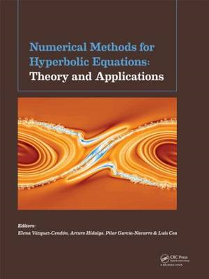 Numerical Methods for Hyperbolic Equations: Conference Papers (BOK)