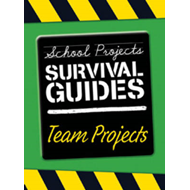 Team Projects (BOK)
