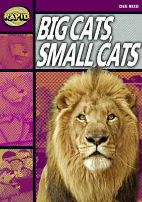 Rapid Stage 1 Set A: Big Cats Small Cats (Series 1) (BOK)