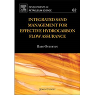 Integrated Sand Management For Effective Hydrocarbon Flow As (BOK)